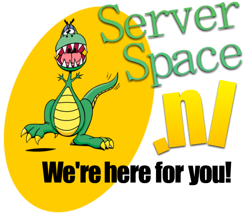 Server Space SEO hosting